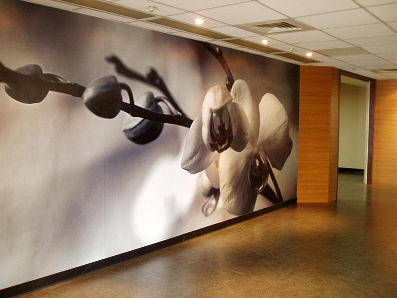 大圖輸出 應用 | 台南醫院-大圖輸出牆面施工